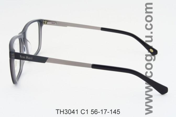 TH3041