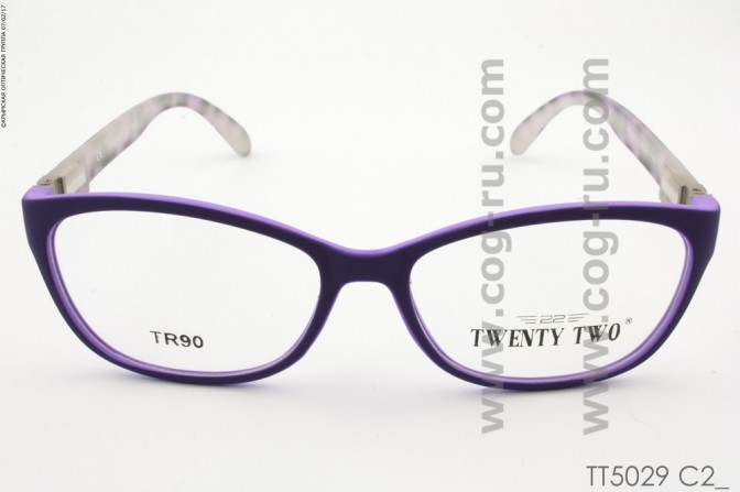 TT5029