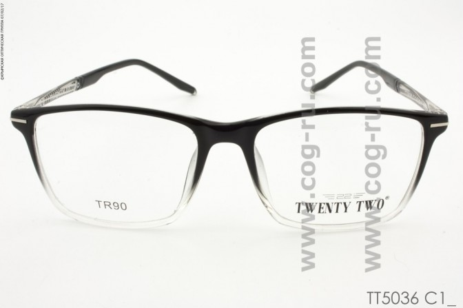 TT5036
