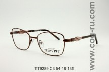 TT9289