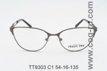 TT9303