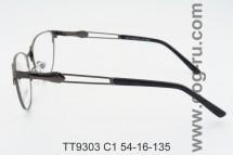 TT9304