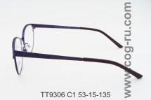 TT9306