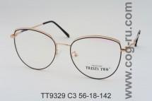 TT9329