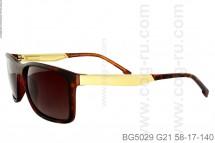BG5029
